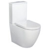 Fienza Alix Rimless Ambulant Back to Wall Suite